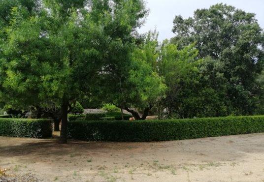 zona verde casa