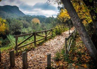 cova negra gran razon para vivir en Xàtiva